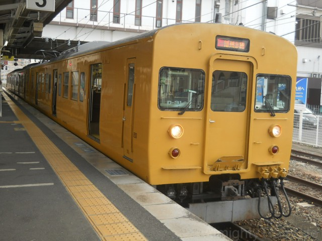 115-yellow