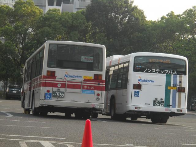 kashihama-bus