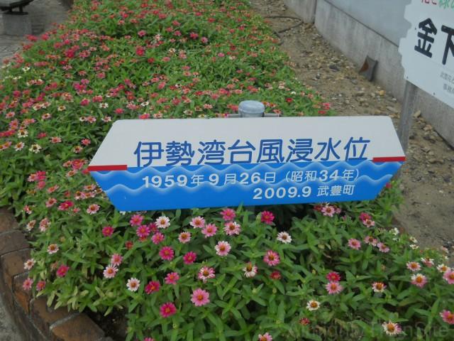 isewan-taifu