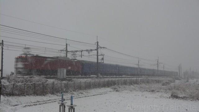 EF81+24系客車 訓練列車