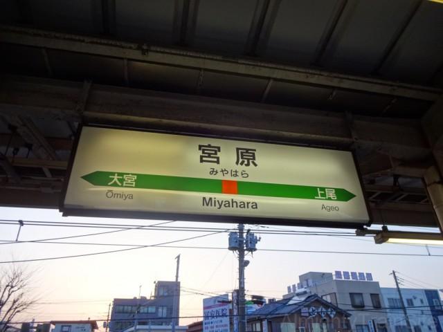 miyahara-sign