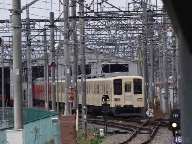 DSC07981