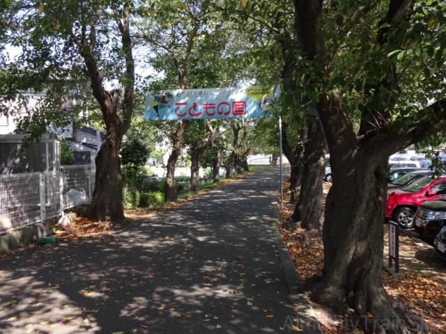 kodomonokuni-road