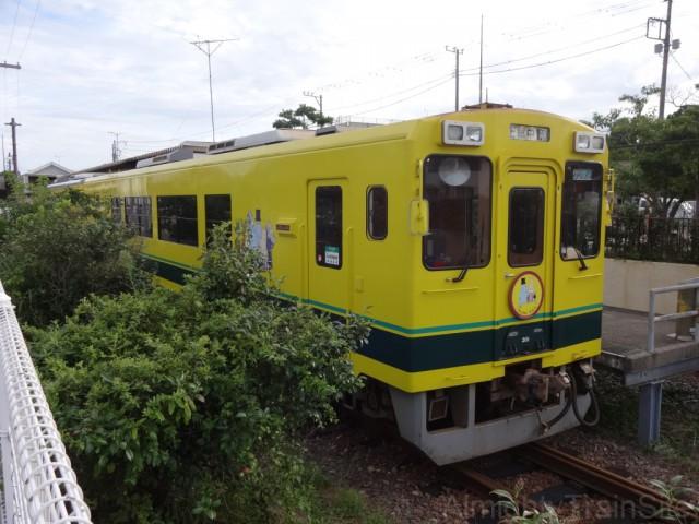 oohara-isumi300