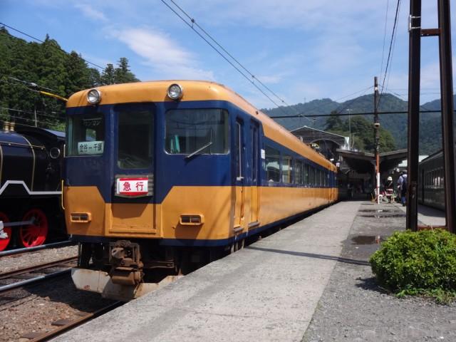 senzu-3