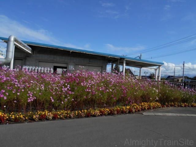 shin-totsukawa-flower