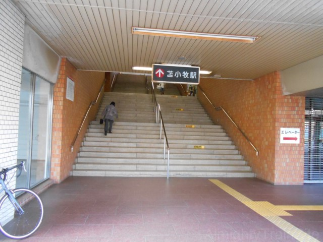 tomakomai-ent (2)