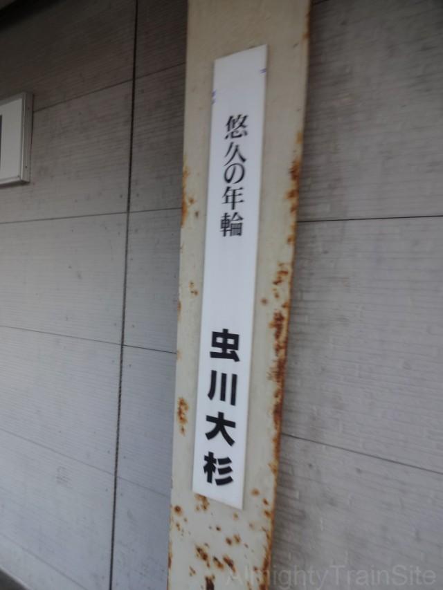 mushigawa-osugi-sign2
