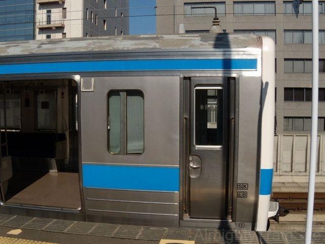 https://ats-s.sakura.ne.jp/zukan/jpg/415/1500-sokumen.jpg